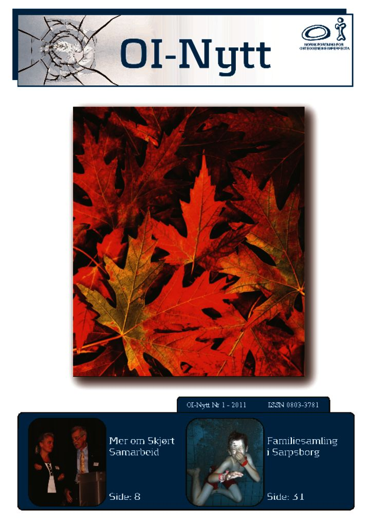 thumbnail of OI_nytt_1_2011